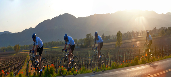 Cure the Cycle Challenge - Napa Valley